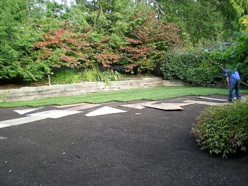 View more photos of Septic System Installation Landscaped Area