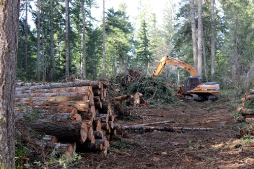 View more photos of Land Clearing Services